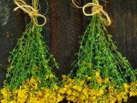 Продаю травы - очищение, защита, восстановление ау 6