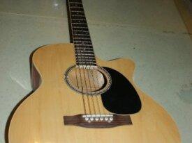 Guitarra Acústica Fretmaster