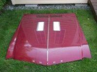 Hood Buick (a-body) 1968-1969 1