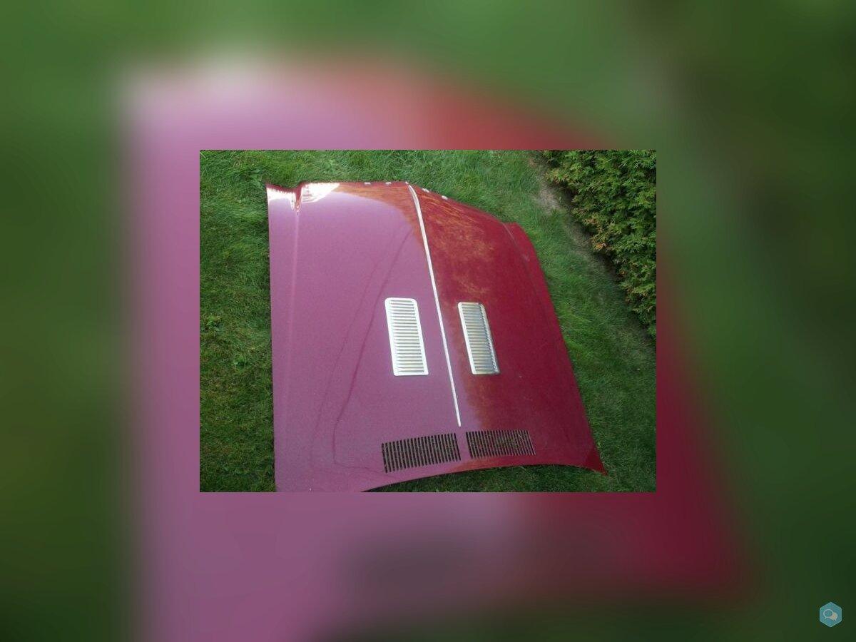 Hood Buick (a-body) 1968-1969 2