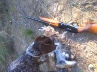 Pack Chasse (hunting pack) 1