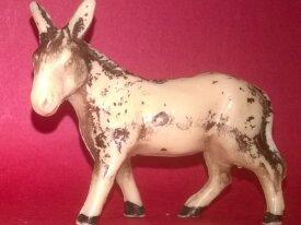 starlux âne