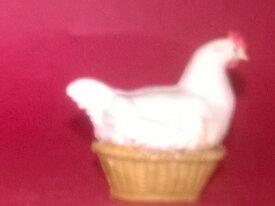 starlux poule