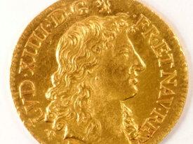 Louis d'or à la tête virile