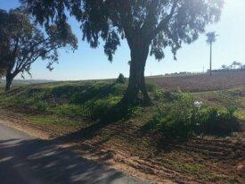 Terrain agricole de 18 hectares à El Jadida