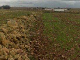 Terrain 8000 m2 près d'autoroute région El Jadida
