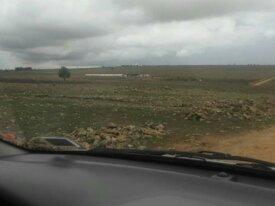 Terrain agricole de 12000 m² à El Jadida