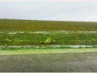 Terrain de 3 hectares à région El Jadida 1