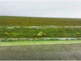 Terrain de 3 hectares à région El Jadida