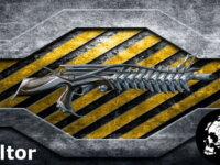 Boltor (Bolt Assault Rifle) 1