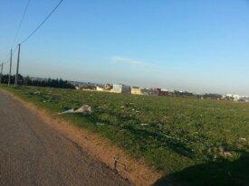 Terrain de 3 hectares près de Green Town