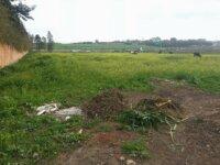 Terrain de 4700 m² à Green Town Bouskoura 1