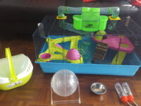 Cage Hamster 1