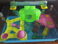 Cage Hamster 2