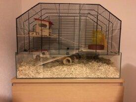 Cage pour hamster nain, souris, etc