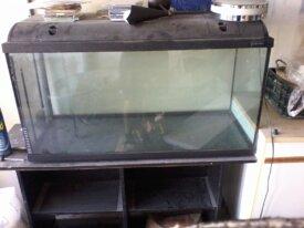 aquarium nu de 7 a 200l