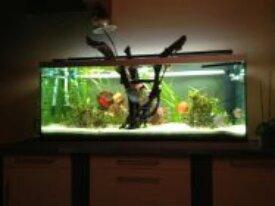 Aquarium 640L