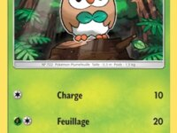 SM1-009|Carte Pokémon|Brindibou 1