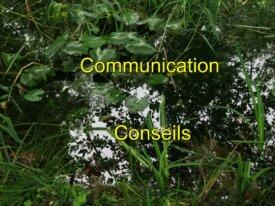 Communication et Conseils