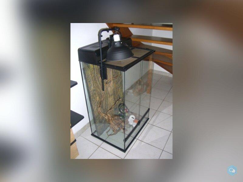 Vivarium Terrarium Exoterra équipé 90x60x45 2