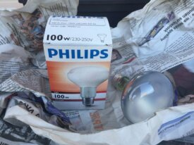 2 ampoules infrarouge PHILIPS