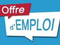 Offre d'emploi 1