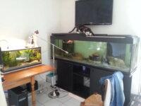 Aquarium 600 litres 2
