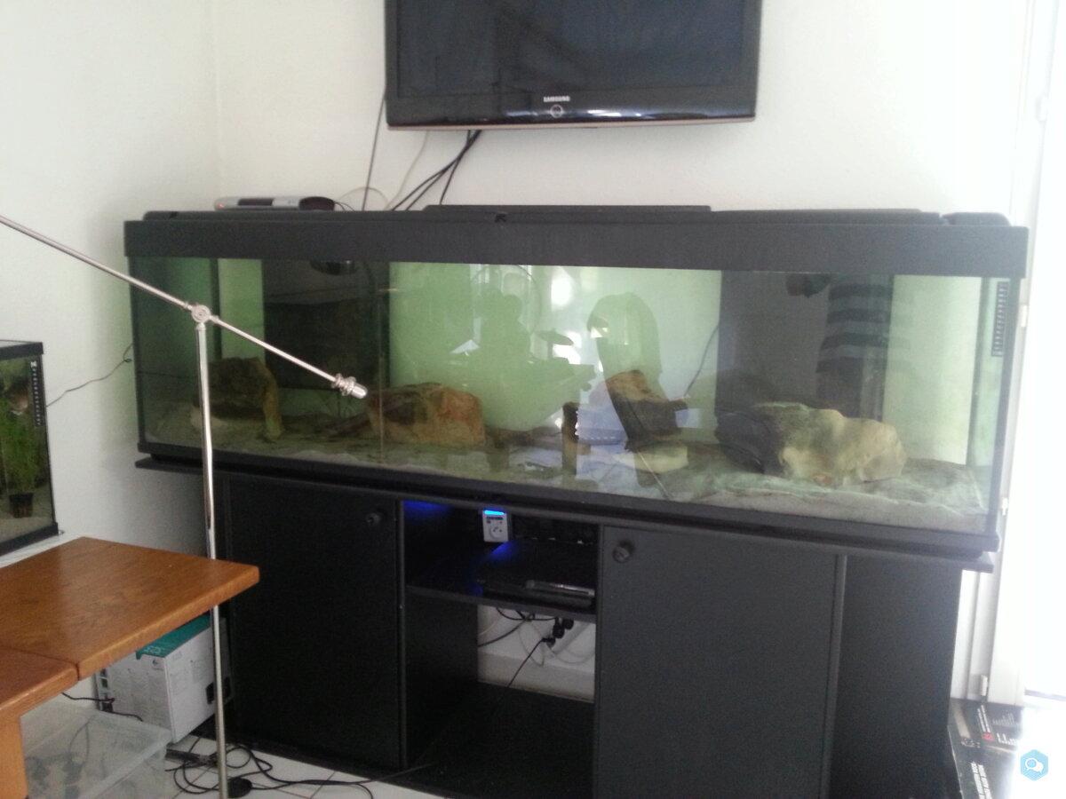 Aquarium 600 litres 3
