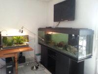 Aquarium 600 litres 4