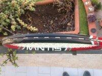 Mantis 285 ps II 4