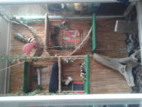 Vends grand terrarium L 160 x l 90 x h 240 1
