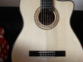 Guitare flamenca electro