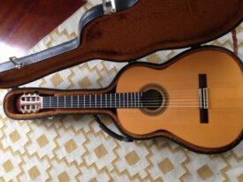 guitare Flamenca Negra Vicente Carillo 2006