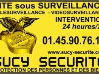 Agent(h/f) de sécurité Opérateur Intervenant 1