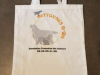 Sac Pattounes D'Or  1