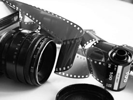 FOTOGRAFIA TARANTULAS