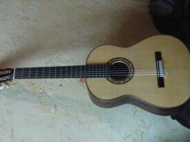 Guitare flamenca negra