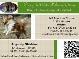 ELEVAGE CANIN : le Val des Delices de Chimene