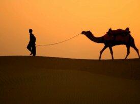 Voyage en inde | Poonam voyage inde