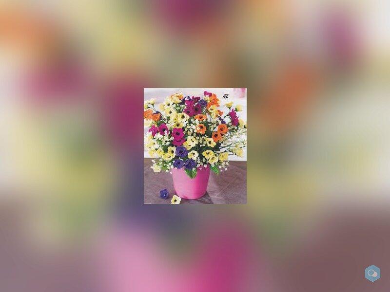 Magnifiques Bouquets de Fleurs du Printemps 1