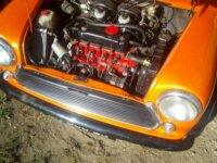 Mini Orange 1
