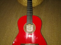 guitare valeriano bernal gitano 50 anniversario 1