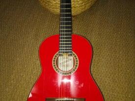 guitare valeriano bernal gitano 50 anniversario