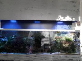 Aquarium eau de mer 600 l équipé en service