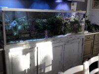 Aquarium eau de mer 600 l équipé en service 2
