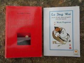 Lot : 2 livres de médecine taoïste