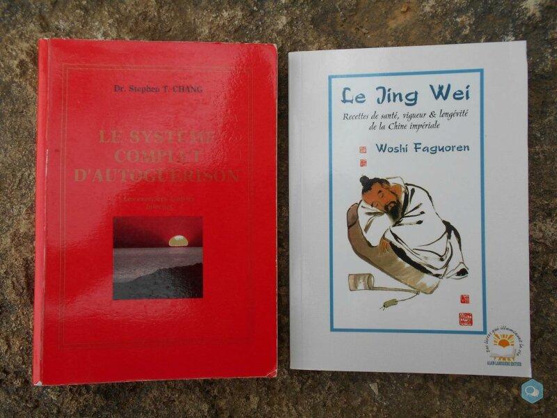 Lot : 2 livres de médecine taoïste 1