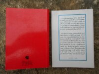 Lot : 2 livres de médecine taoïste 2