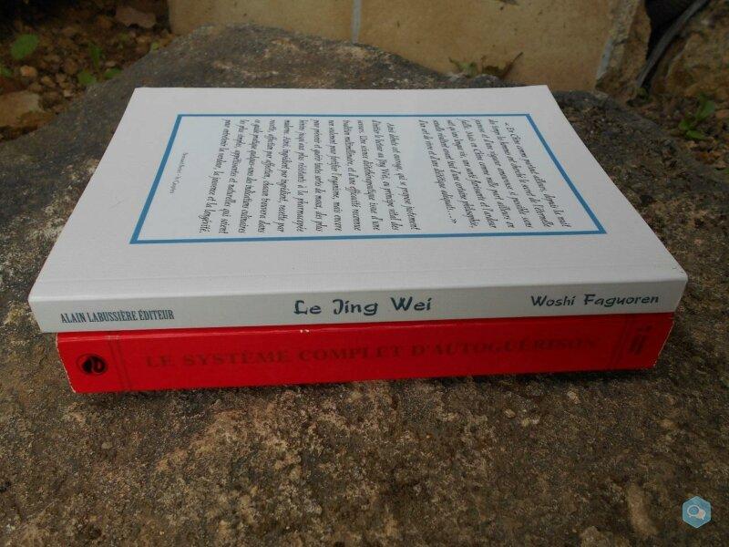 Lot : 2 livres de médecine taoïste 3