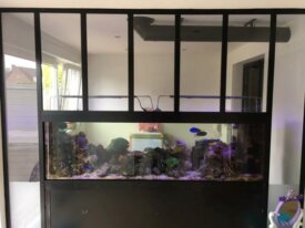 Vends Aquarium 550L